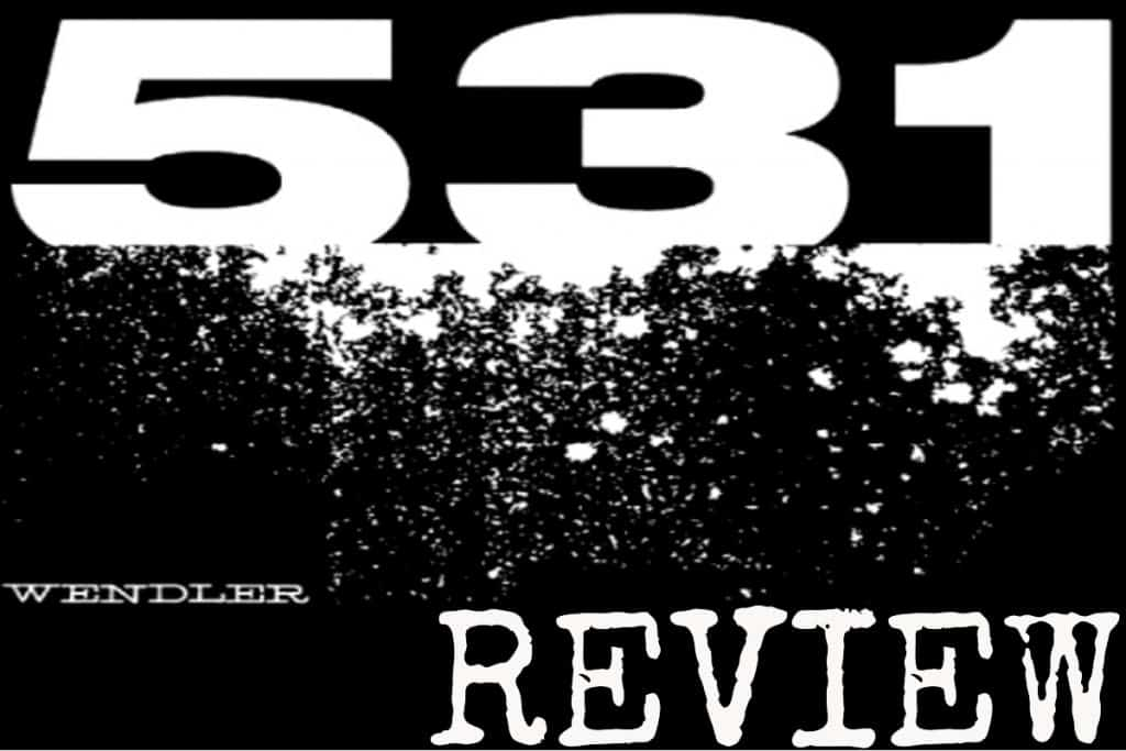 How To Get The Most From Wendler S 5 3 1 Review
